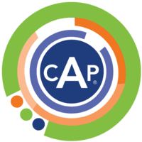 Image of the CAP Certified Analytics Professional icon